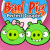 Angry Birds - Bad Pig Couples
